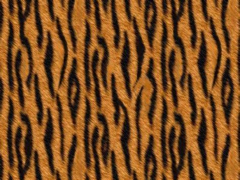 Leopard Chetah Skin Iphone Dan Semua Hp 1000 images about s animal prints on