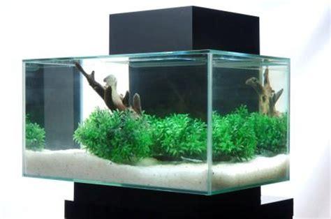 aquarium design edge amazon com fluval edge 6 gallon aquarium with 21 led
