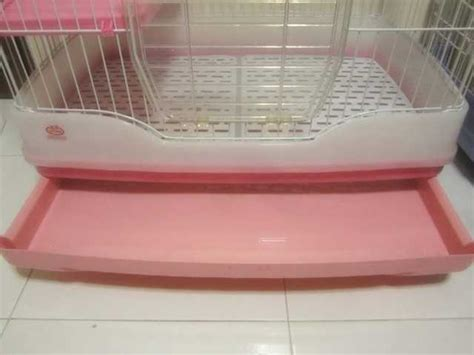 Pet Cargo Dayang Da Yang Size L Pet Carrier Voyager Transport Hewan dayang r61 rabbit cage for sale for sale adoption in singapore adpost classifieds