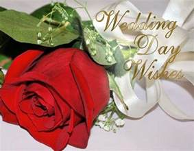 Wedding Wishes Pics Wedding Wishes And Messages 365greetings Com
