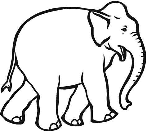 Coloring Pages For Elephants free elephant coloring pages