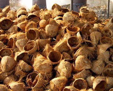 cara membuat jam dinding dari batok kelapa cara membuat pengawet makanan alami dari tempurung kelapa