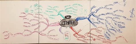 Mba Project Mindfulness by Mega Mind Map From Mba Student Project On Obesity
