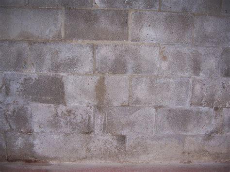 basement concrete block mortar seepage advice building