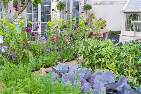 Flowers For Vegetable Gardens Beautiful Vegetable And Flower Garden Vegetables Carrots Peas Cabbages Flowers Ireises