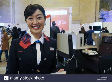 Jo In Pet Comb Comb Row Intl american airlines flight attendant stock photos american