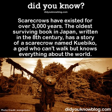 3000 facts about books did you scarecrows existed for 3 000