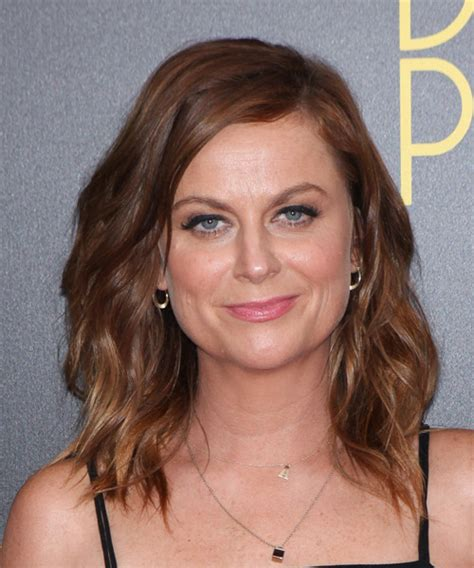 poehler hair color poehler medium wavy casual hairstyle chocolate