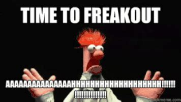 Freaked Out Meme - the muppets panic gif find share on giphy