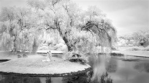 Infrared photography for weddings and portraits