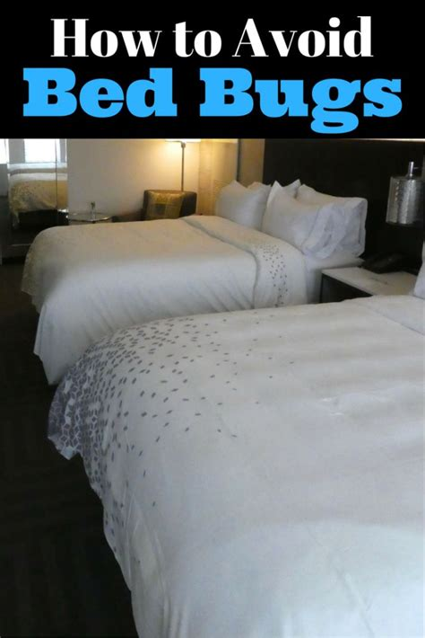 how bed bugs travel 212 best images about travel tips on pinterest