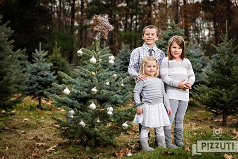 christmas tree farms in mass collection ma tree farms pictures tree decoration ideas