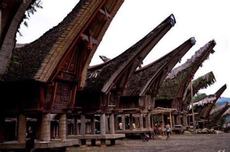 palawa  toraja  indonesia indonesia travel guides