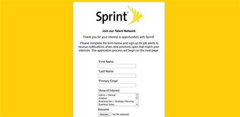 Boost Mobile Resume
