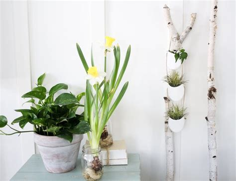 make your own hanging planter make your own modern diy hanging planter ehow