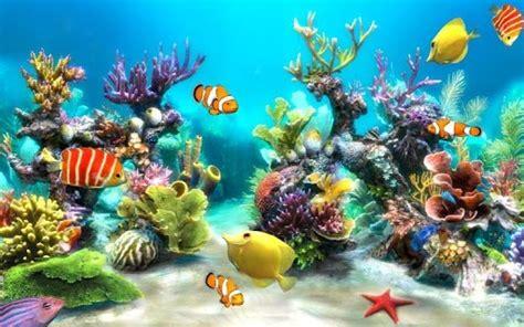 aquarium wallpaper hidup  membuat android  lebih