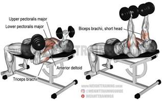 incline grip bench press incline grip dumbbell bench press exercise