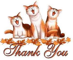 4f99c5ddab6221864bfaa816304346ef_animated gifs thanks thank you cat thank you clipart_300 250 animated thank you cats on download birthday cake for my love