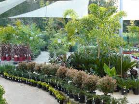 Home Business Ideas Qld Garden Centre And Nursery Gt Coast Queensland