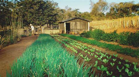 horticultura urbana huerto balcon i congreso santafesino de agroecolog 237 a colegio de