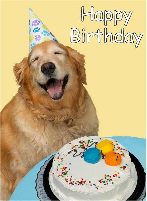 Happy Birthday Wishes Dogs Petite Hermine Happy Birthday To Me Animals Part 3