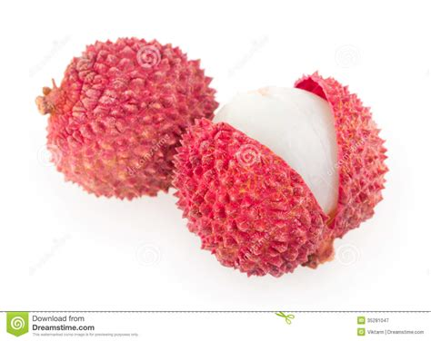 lychee fruit drawing lychee royalty free stock photography image 35281047