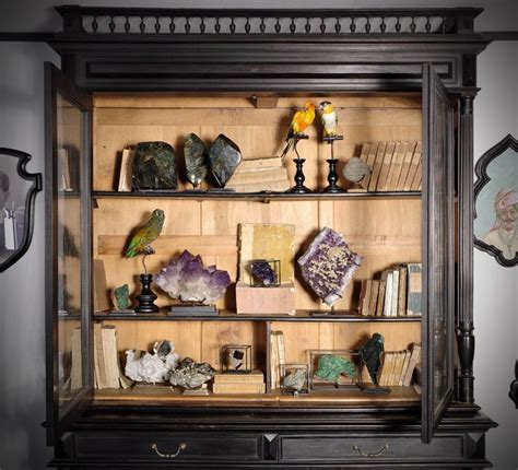 Meuble Cabinet De Curiosité by 682 Best Cabinet Of Curiosities Images On
