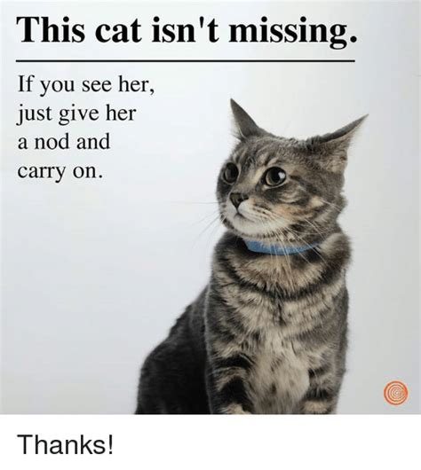 Dank Cat Memes - 25 best memes about just giving just giving memes