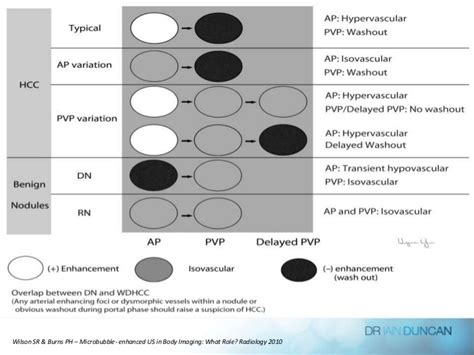 Contrast Enhanced Ultrasound And Liver Imaging Review Of The Literature by Contrast Enhanced Liver Ultrasound