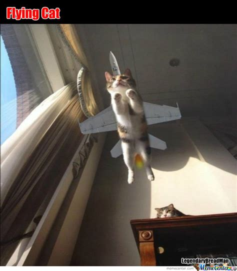 Flying Cat Meme - flying cat by legendarybreadman meme center
