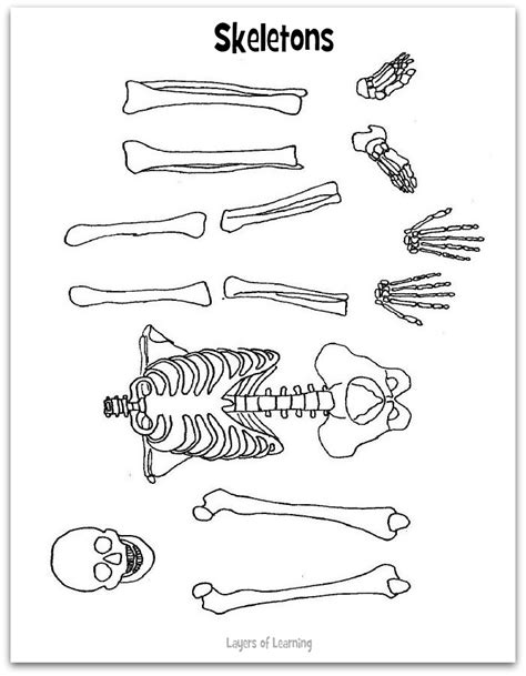 best photos of printable skeleton cut out halloween
