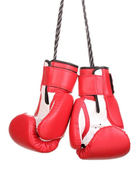 Jcope Settles With Former State Athletic Commission Chair Boxing Gloves