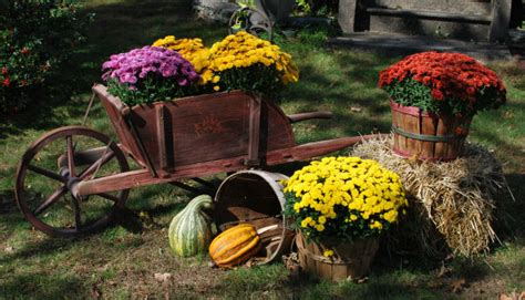 front yard fall decorating ideas my primitive decorating ideas more front yard