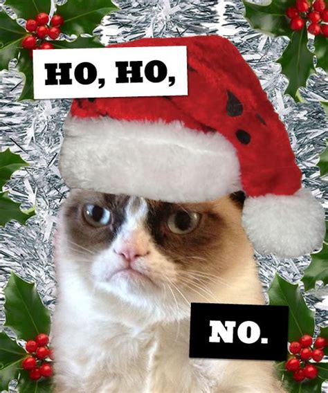 1128 best images about grumpy cat grumpy dwarf on pinterest
