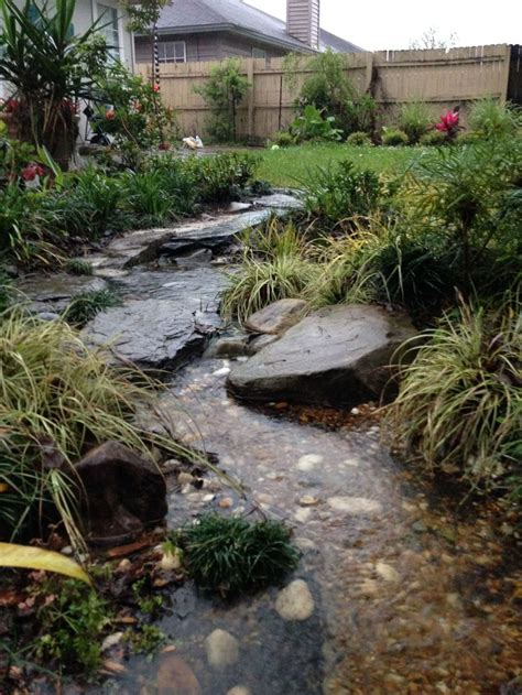 backyard creek ideas best 25 rain garden ideas on pinterest