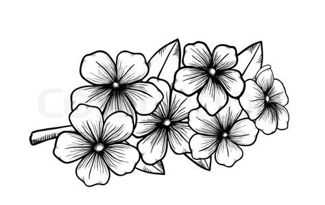 design an invitation to print free branch of a blossoming tree in graphic black white style