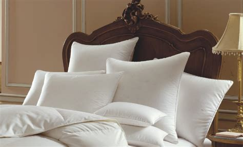 goose down bed pillows offering high quality white goose down pillows like