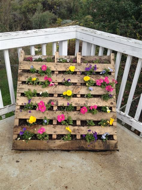 palette flower bed picture  full  hanging petunias