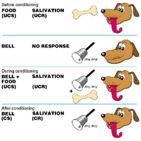 classical conditioning diagram psy 111 l clockwork orange an eye opening