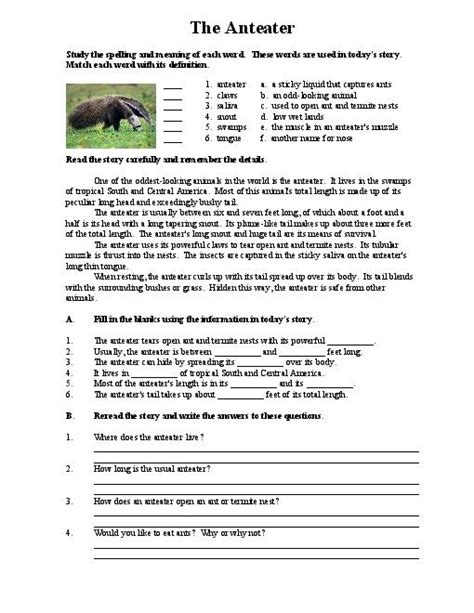 Reading Comprehension Worksheet High School all worksheets 187 reading comprehension worksheets high