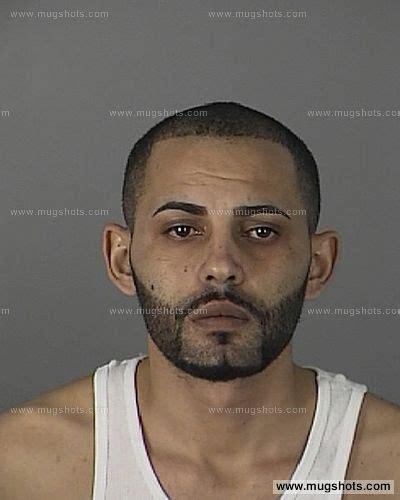 Pasco County Arrest Records Basem Elghazal Mugshot Basem Elghazal Arrest Pasco County Fl