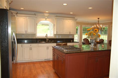 kitchen cabinets wood types kitchen cabinet wood types home ideas and designs