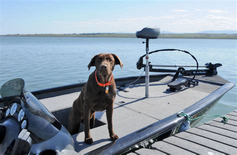 lake lowell boating season boat lake lowell 101 things to do summer guide