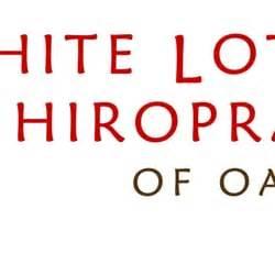 lotus of chiropractic white lotus chiropractic of oak park ltd chiropractors