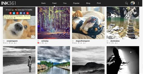 instagram layout problems related keywords suggestions for ink instagram viewer