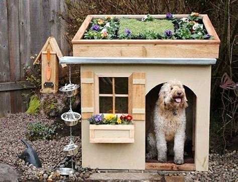 cute dog houses cute dog house dog horsey birdie inspirations pinterest