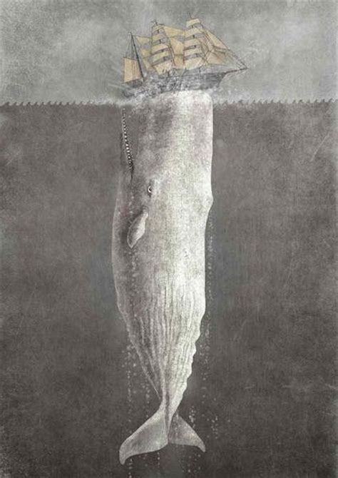 terry fan the whale art print 42 best images about moby on pinterest malaga the
