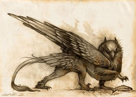 tattoo nightmares griffin 1000 images about gryphons on pinterest the head wings