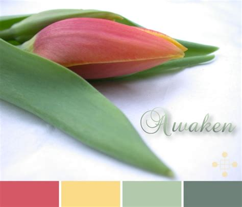 30 best images about color colorgraphical on exterior colors pantone color and
