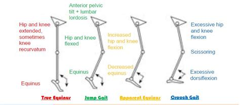 pattern classification meaning classification of gait patterns in cerebral palsy